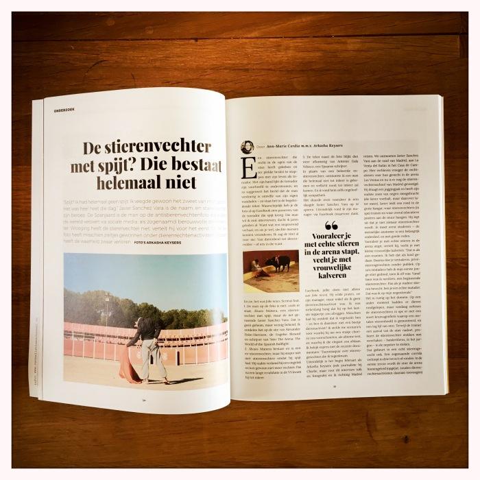 StierenvechterBookzine
